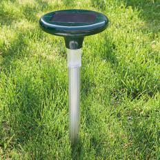 B-Ware: Leuchtender Solar-Maulwurfvertreiber