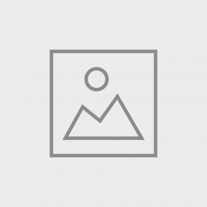MAULWURFSCHRECK: Incarvillea Pflanze (5 Stück)-1