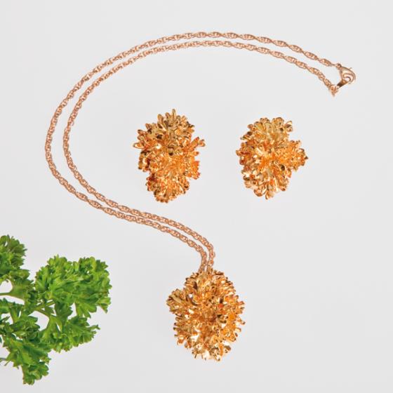 Petroselium Crispum Schmuck