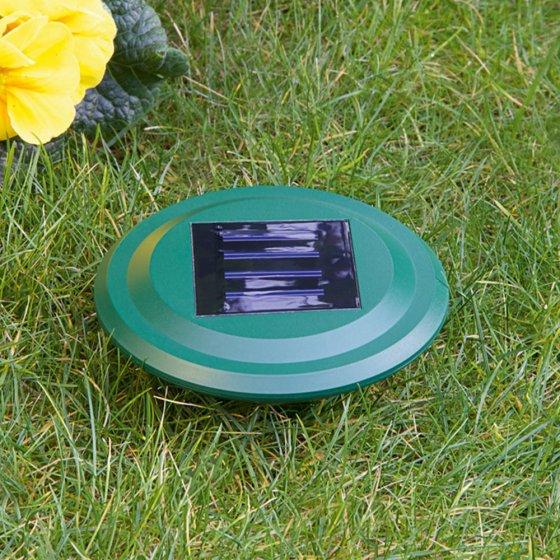 Intelligenter Solar-Wühlmausvertreiber