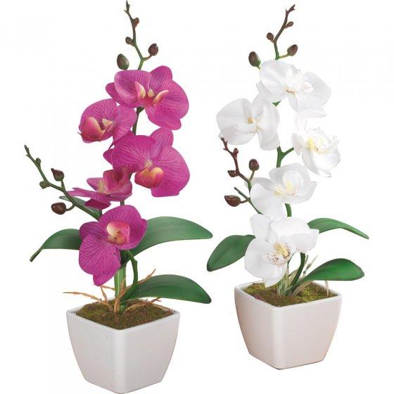 Kunstblumen Orchideen im 2er-Set