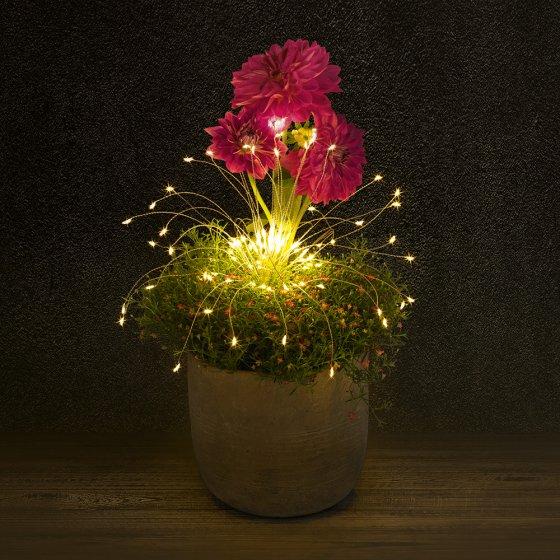 LED-Leuchtzweige