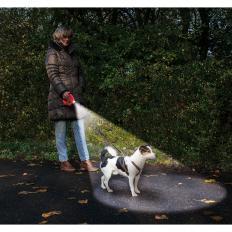 Roll-Hundeleine mit Licht und Kotbeutel-2