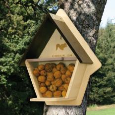 Eichhörnchen-Futterstation-2