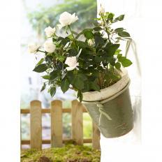 Soft-Pflanzenbinder, dünn-2