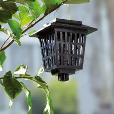 Solar-Mückenvernichtungslampe-2