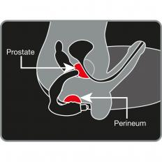 Prostata-Stimulator-2
