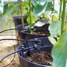 Solar-Bewässerungssystem-2