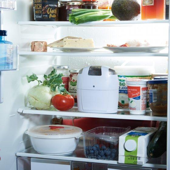 Haltbarkeit Gekochte Lebensmittel Kühlschrank