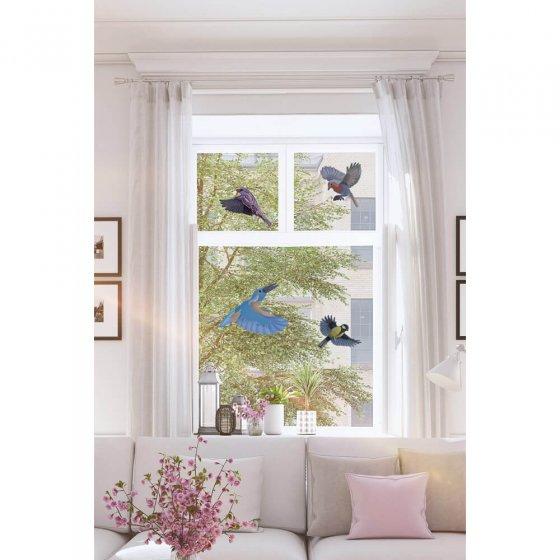 Vogel- und Fensterschutz-Silhouette