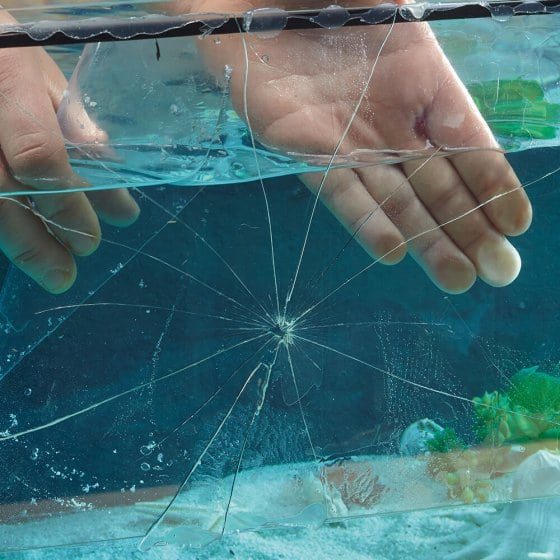 Transparentes Dicht- und Reparatur-Tape