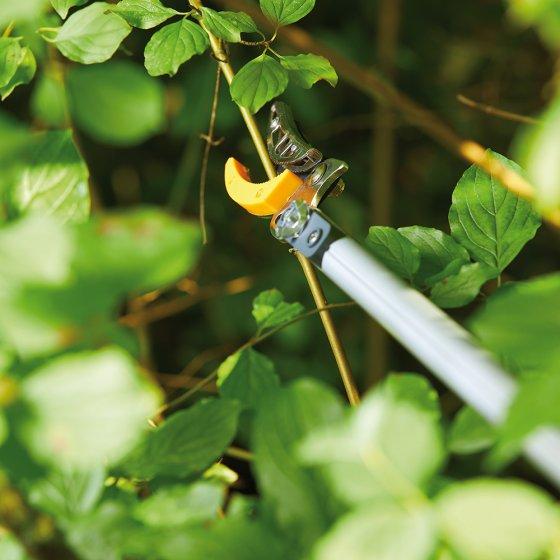 Teleskopierbare Baumschere mit Säge