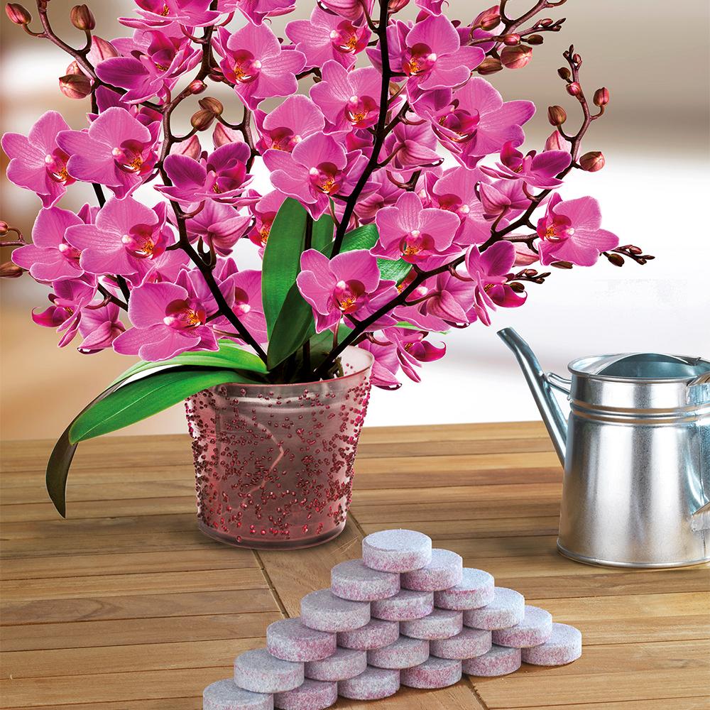 orchideen d nger tabs. Black Bedroom Furniture Sets. Home Design Ideas